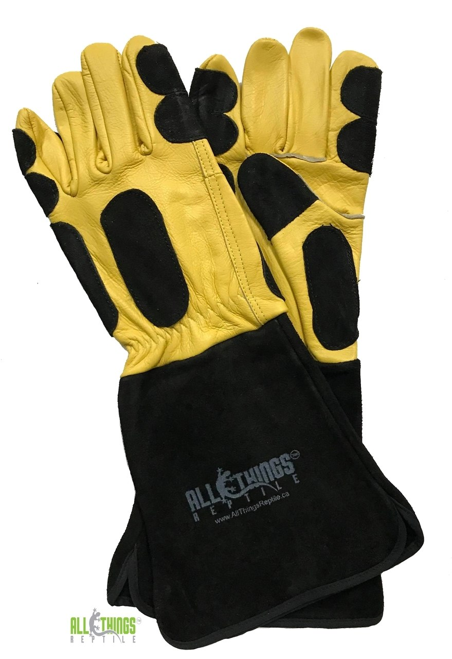 Atr Reptile Handling Gloves Port Credit Pets Reptile